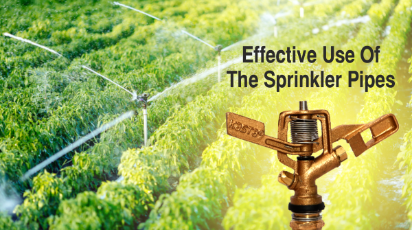 Effective Use Of The Sprinkler Pipes